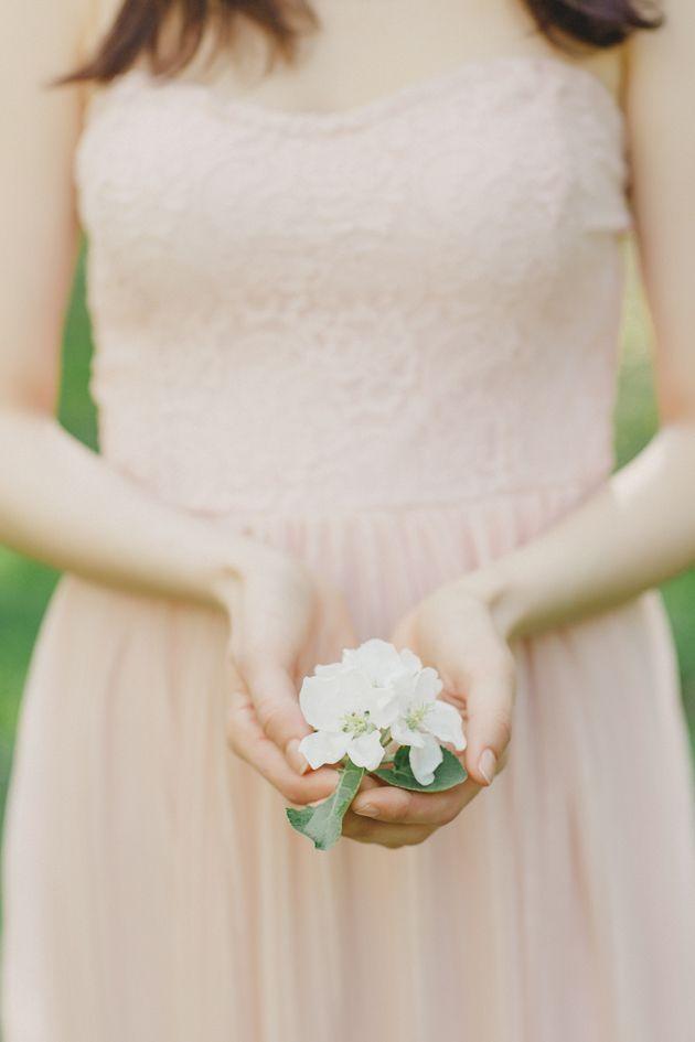 Svadba vesnoi  (4)