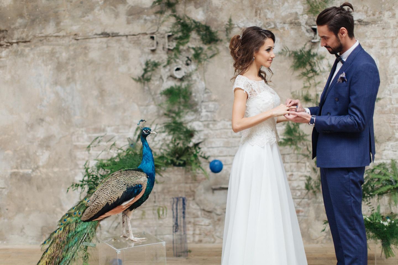 Песня павлина: стилизованная фотосессия Дмитрия и Снежаны