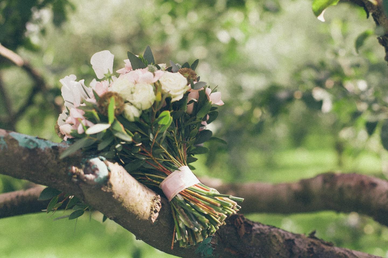 Яблоневый сад: свадебная love-story Евгения и Анастасии